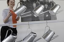 V ústecké galerii Emila Filly byla zahájena výstava Minimální trvanlivost, která pracemi současných umělců reflektuje rok 2012. Na snímku je dílo Mileny Dopitové s názvem Vlevo, pak rovně a první.