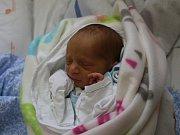 Josef Korej se narodil Sabině Korejové z Ústí nad Labem 28. srpna v 11.00 hod. v ústecké porodnici. Měřil 43 cm a vážil 2,2 kg.