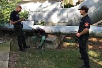 Strážníci v Ústí nad Labem zadrželi dvě dívky v celostátním pátrání