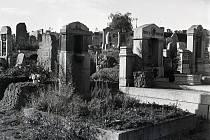 Tentokrát se podíváme na ústecké hřbitovy