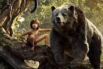 Kniha džunglí v kině hraničář
