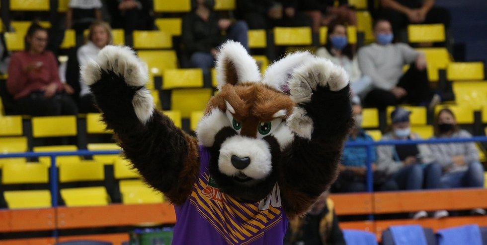 Maskot basketbalistů Ústí nad Labem Sunny
