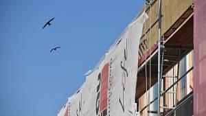 Ptáci nad školkou marně hledají přístup do zazděných hnízd.