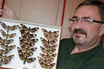 Jiří Spružina si splnil sen. Nadšení do entomologie ho přivedlo od policejní uniformy až do ústeckého muzea, kde je kurátorem. Opatruje zdejší sbírku, která má přes 80 tisíc exemplářů.