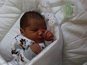 Emilie Demeterová se narodila v ústecké porodnici 15. 5. 2017(0.50) Andrianě Demeterové. Měřila 46 cm, vážila 2,55 kg.