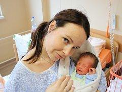 Štěpánka Hajduková se narodila v ústecké porodnici 6.3. 2017 (16.09) Šárce Hajdukové. Měřila 46 cm, vážila 2,25 kg.