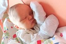 Marek Starosta se narodil Lindě a Davidovi Starostovým z Ústí nad Labem 17. února v 19.02 hodin v Ústí nad Labem. Měřil 49 cm, vážil 3,06 kg