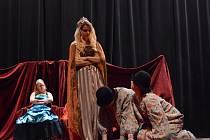 Po muzikálu Vlasy a Dracula nastudovali studenti ústeckého gymnázia spolu s dětmi ze speciální školy nové představení Elixír dobra a zla.