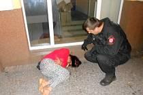 Strážníci našli v noci silně opilou ženu.