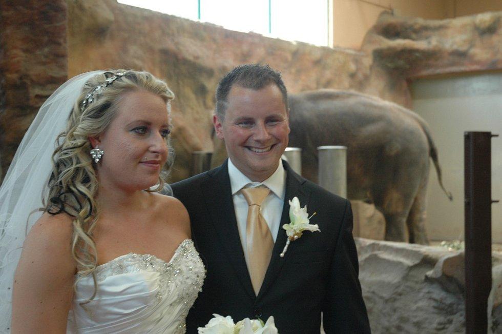 Jan Rožec a Kateřina Veselá si řekli své ano v pavilonu slonů.