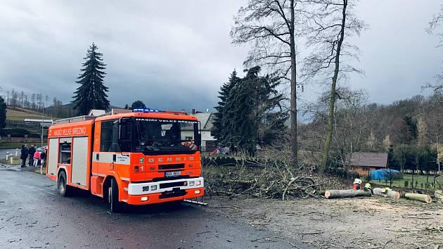 Padlý strom přerušil v Homoli U Panny elektrické vedení