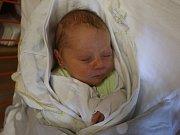 Milan Roštejnský se narodil Miroslavě Roštejnské z Ústí nad Labem 27. srpna ve 20.11 hod. v ústecké porodnici. Měřil 48 cm a vážil 3,2 kg.