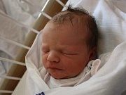 Stela Fleischhansová se narodila v ústecké porodnici 6.7. 2017(11.55) Denise Fleischhansové. Měřila 52 cm, vážila 3,55 kg.