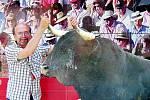 Miloslav Cihlář z Liberce se nechal zvěčnit jako odvážný toreador s býkem v jihošpanělské Malaze. Malaga je centrem Costa del Sol, největšího turistického regionu ve Španělsku.