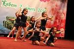 Češi s Vietnamci oslavili v sobotu 2. února v DK Ústí Asijský nový rok.