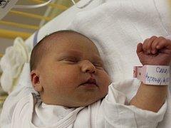 Anežka Chvapilová se narodila v ústecké porodnici 29.11.2015 (17.59) mamince Michaele Molnárové z Děčína. Měřila 48 cm, vážila 2,75 kg.