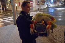 Strážníci se postarali o miminko i jeho nezodpovědnou matku.