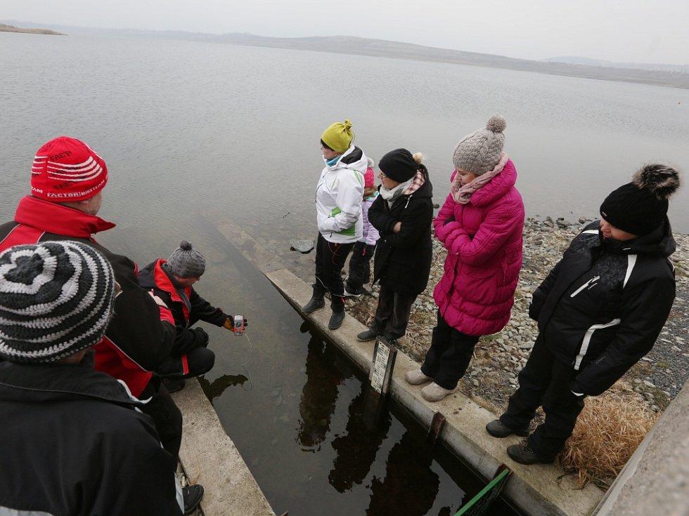 Trmická parta otužilců se už od září roku 2015 každou středu a neděli schází u jezera Milada a užívá si otužování v jeho chladných vodách.