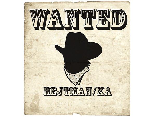 Hledá se hejtman/ka.