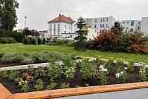 Nově osázené květinové záhony v parku naproti soudu.