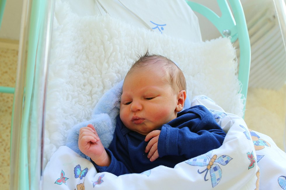 Matěj Krtek se narodil Haně Plhákové z Duchcova 5. září ve 13.42 hodin v Ústí nad Labem. Měřil 52 cm, vážil 3,42 kg