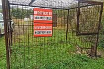 Odchytové klece na divoká prasata v Ústí nad Labem
