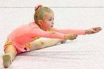 Moderní gymnastky zakončily úspěšnou sezonu.