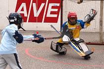 Nábor nejmenších hokejbalistů na Bukově začal.