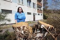 Břízy v Dvojdomí padly, protože bránily světlu. Podle Evy Šlégrové by ale stačilo stromy prořezat. Takhle je sice v domě možná víc světla, ale se stromy zmizeli i ptáci a lidé mají výhled jen na kontejnery. V domě se navíc zvýšil hluk z okolí.