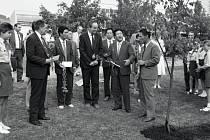 Komunistická delegace ze Severní Koreje spolu s ústeckými funkcionáři KSČ sází nedaleko školy v Centrálním parku na Severní Terase stromy Přátelství.