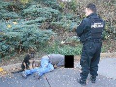 Opilec, který ležel poblíž bývalého hotelu Máj, měl sebou psa.
