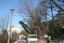 Kácení nebezpečného stromu poblíž malenovického koupaliště.