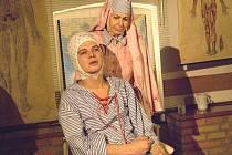 Divadelní představení Oskar a Růžová paní.