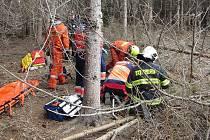 V sobotu zavalily ve Zlínském kraji stromy dva muže na dvou různých místech, téměř v jeden okamžik.