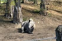 Výlet do zlínské zoologické zahrady.
