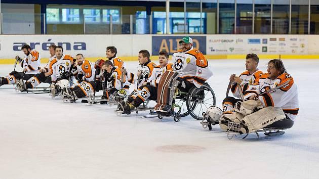 Sledge hokejisté SHK Lapp Zlín. Ilustrační foto
