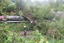 Napajedelský parovod přeťal strom. Byla ohrožena vlaková doprava