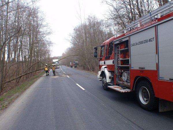 Pády stromů zaměstnávají hasiče vkraji