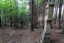 Křížová cesta vede od Malenisek lesem.