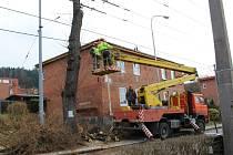 V sobotu 28. a v neděli 29. března 2015 dřevorubci pokáceli vzrostlé stromy v ulici Mostní ve Zlíně. Dřeviny šly k zemi kvůli chystané opravě ulice.