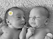 Michalka a Jaroušek Zaoralovi z Tlumačova se narodili 3.4.2012, míry 41 cm a 47 cm, 2150 g a 2570 g