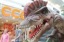Ve zlínském Zlatém jablku probíhá expozice dinosaurů