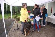 Podzimní setkání útulkových psů a jejich majitelů ve Zlíně na Vršavě.