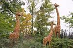 Řezbáři z Gabonu a Nigérie ve zlínské zoo