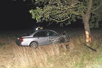 Šestadvacetiletý řidič vyjel z cesty a narazil do vzrostlého stromu.
