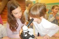 Přírodovědný workshop. Děti pozorovaly věci mikroskopem
