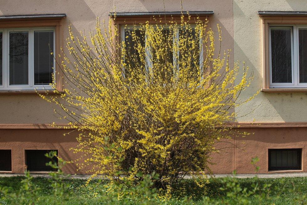 Jaro přišlo i do Zlína.