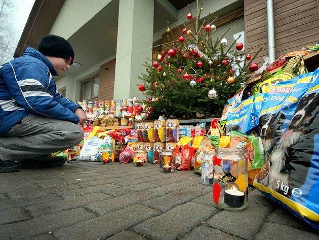 Dobrovolní dárci dovezli ve středu 8. prosince 2010 své zvířatům ze zlínského útulku granule, konzervy nebo jiné potřeby. Ilustrační foto
