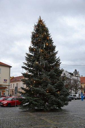 Osmimetrový vánoční strom vUherském Hradišti stojí na Masarykově náměstí. Je jím jedle ojíněná, kterou do centra města přivezli ze sídliště Štěpnice.