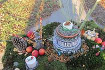 Dort z ptačích dobrot ořechová jádra, jablka, šípky a další pokrmy. To všechno dnes lidé přinesli na ptačí hostinu.